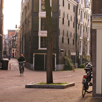 amsterdam alleys and bikes