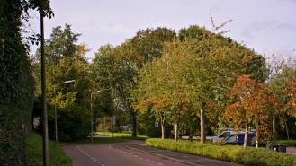 Belgian road 1